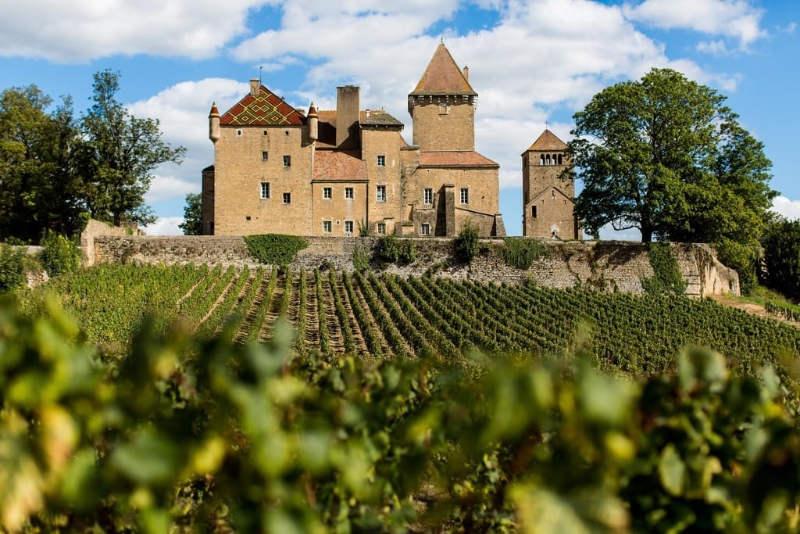 chatteau pierreclos vigne
